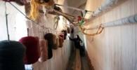 گزارش تصویری: کارگاه سنتی قالیبافی در کرمان
