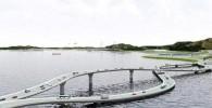 عکس : احمقانه ترین پل جهان اما ایده ای جالب!