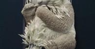 گزارش تصویری مجسمههای کاغذی زیبا از حیوانات اثر Calvin Nicholls