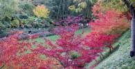 تصاویری بسیار جالب از پاییز رنگارنگ در کانادا