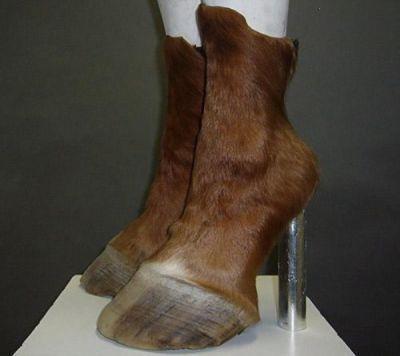 کفش هایی به شکل سم چهار پایان
