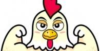 مرغی در ایران که تخم مستطیلی میگذارد!!