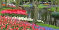 7 عکس از باغ حیرت انگیز از سراسر دنیا