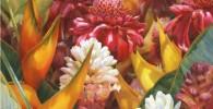 گزارش تصویری: نقاشیهای آبرنگ زیبا از گلها