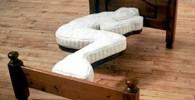 کدام یک از این تختخواب های عجیب مورد علاقه شماست؟