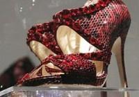 ستاره های هالیوود کفشهایشان را اهدا کردند!