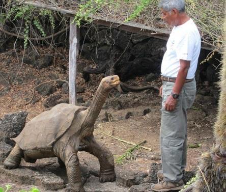 تصاویری از جزیره لاکپشت های غول پیکر