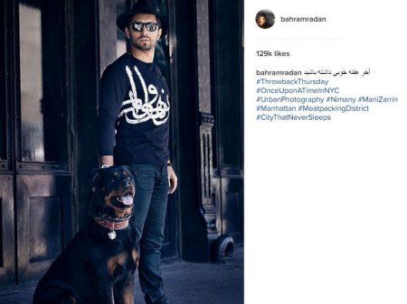 تصویر سگ غول پیکر بازیگر معروف ایرانی