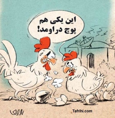 کارتون روز: پارازیت باعث ناباروری می شود